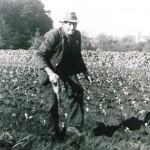 Harold Woolridge