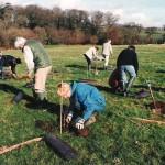 Brookland Wood, treeplanting