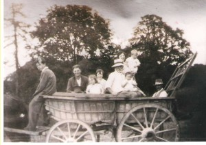 Cart at Blandfords Farm