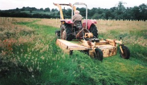 Grass-cutting Brookland Wood