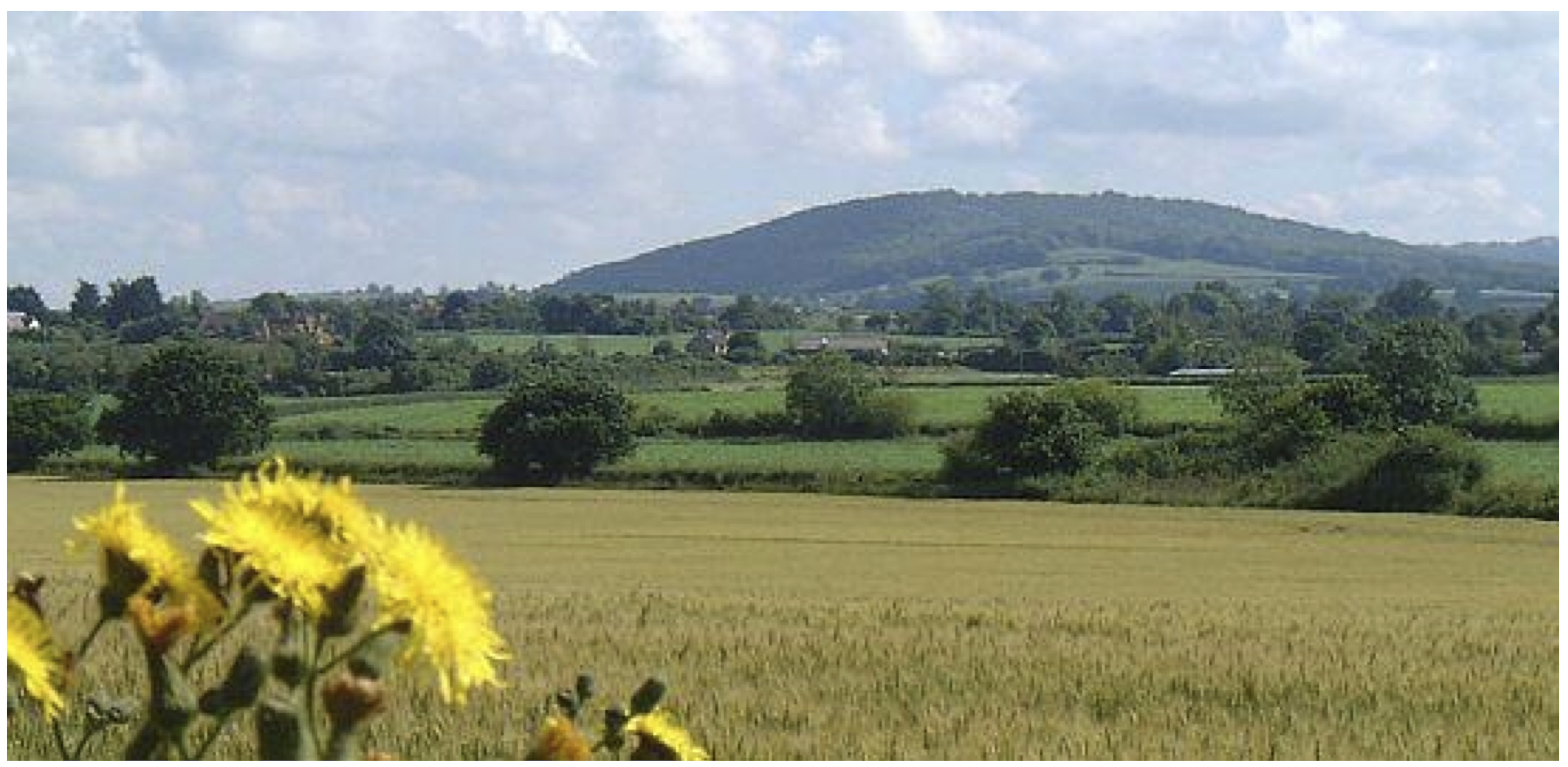 Duncliffe Hill - scene of a Clubmen gathering that Cromwell convinced to disperse peaceably (4 August 1645)