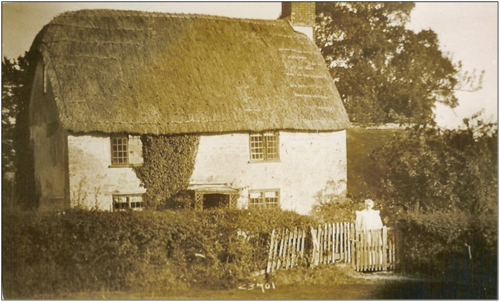 Here is the cottage where Herbert & Elizabeth Lemon lived, possibly taken in 1914. Elizabeth stands, in her best frock, at the garden gate. The cottage still survives.