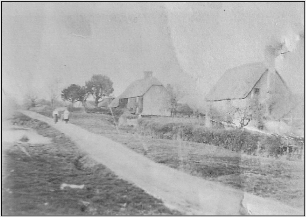 This is a very old 19th century photograph. Looking north along Gupples Lane towards Shaftesbury with the Lemon's cottage on the right and Tucker's Farm house a little further along.