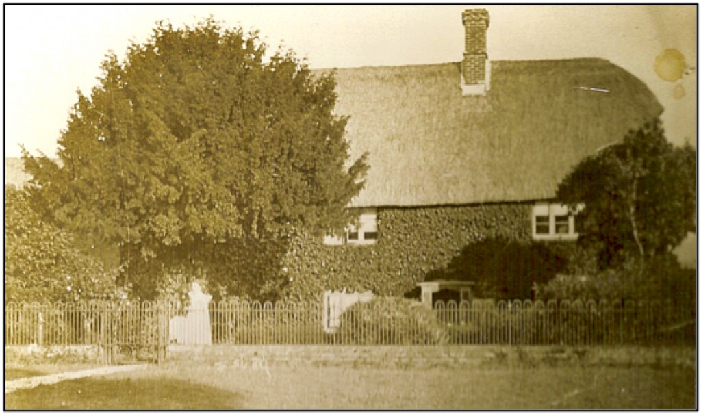 Here is a photo of Tucker's Farm House in about 1914. It is probably Alice Rebbeck standing at the garden gate in her best frock.